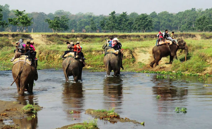 Chitwan Jungle Safari 03 Nights 04 Days